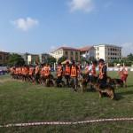 5-chuan-bi-thi-(3)