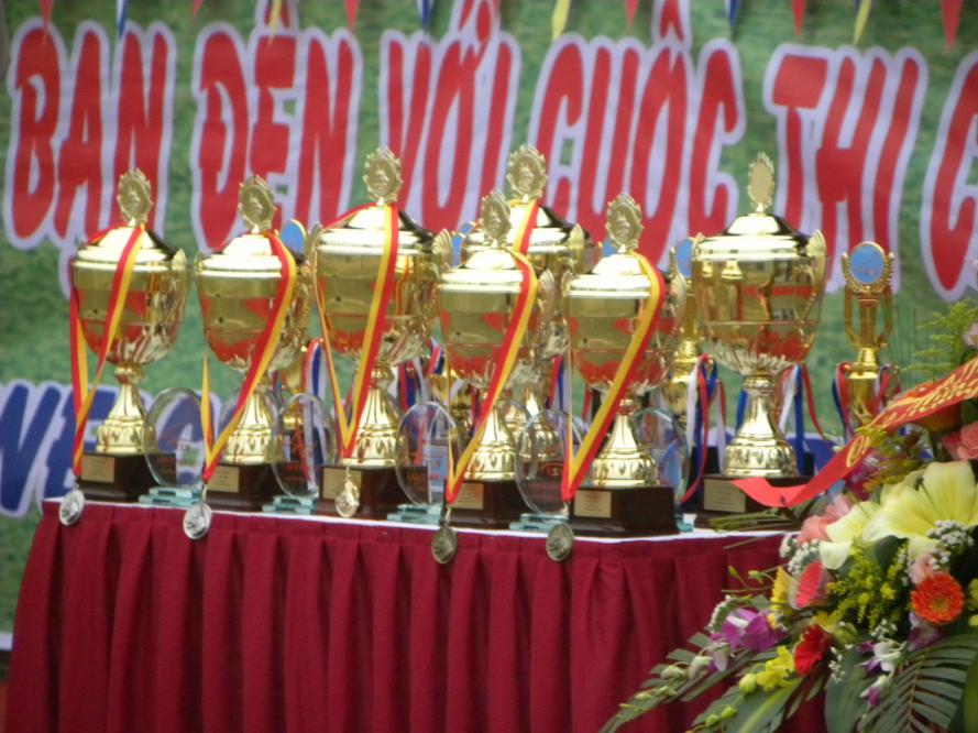 Vietnam sieger show 2011